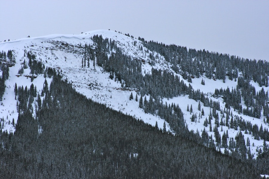 <b>Figure 1:</b> Avalanche in East Vail backcountry. Dale Atkins photo. (<a href=javascript:void(0); onClick=win=window.open('https://caic-production.imgix.net/uzd149nbyzs5kggzg030ps63q671?ixlib=php-3.1.0&s=d90be7f138df92b80729d79cae2a5c37','caic_media','resizable=1,height=820,width=840,scrollbars=yes');win.focus();return false;>see full sized image</a>)