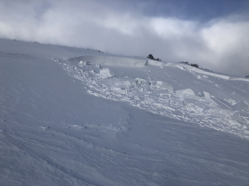 <b>Figure 7:</b> Another view of the crown at the southern edge of the avalanche where it broke the deepest. (<a href=javascript:void(0); onClick=win=window.open('https://caic-production.imgix.net/v8bdbadq2dj0013veqdz2zq9tl1p?ixlib=php-3.1.0&s=96868a4ec612075892bbb309afbb342f','caic_media','resizable=1,height=820,width=840,scrollbars=yes');win.focus();return false;>see full sized image</a>)