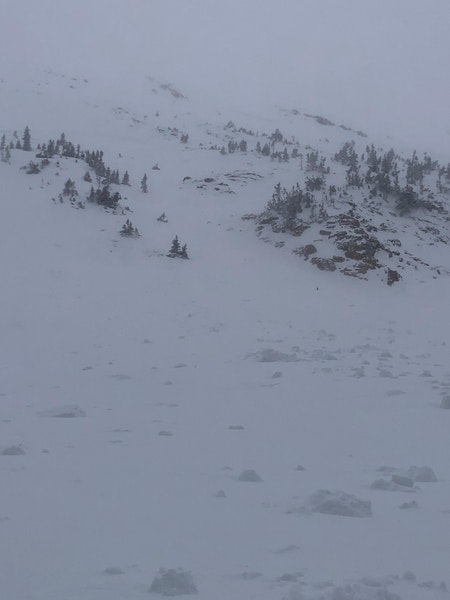 <b>Figure 4:</b> Looking up at the avalanche from the climber's left side of the avalanche path. Skier 2 triggered the avalanche in the gully beyond the sparsely-treed rib, and the avalanche broke across the rib and the gully in the foreground. (<a href=javascript:void(0); onClick=win=window.open('https://caic-production.imgix.net/w2snwchw3fzgmmabo0ph50puzdzm?ixlib=php-3.1.0&s=511727e2fc7fd995b29bb805e64a5bab','caic_media','resizable=1,height=820,width=840,scrollbars=yes');win.focus();return false;>see full sized image</a>)