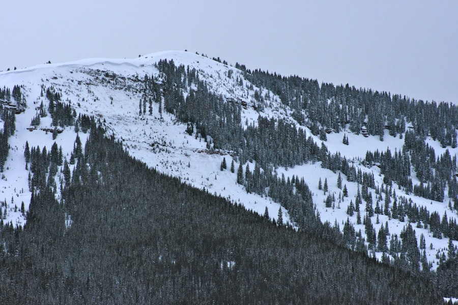 <b>Figure 1:</b> Avalanche in East Vail backcountry. Dale Atkins photo. (<a href=javascript:void(0); onClick=win=window.open('https://caic-production.imgix.net/wdxnh2q55wieb16jgfnypp6feksc?ixlib=php-3.1.0&s=21cb13ca91cc515bad774b5049e4ea79','caic_media','resizable=1,height=820,width=840,scrollbars=yes');win.focus();return false;>see full sized image</a>)