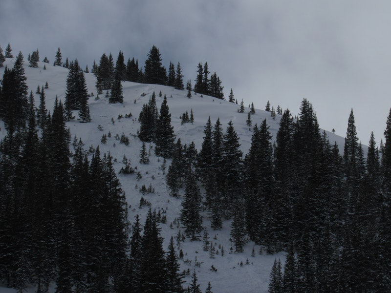 <b>Figure 3:</b> An avalanche that released on 1/24 or 1/25. We don't know if it was natural or remotely triggered by the track in the photo. (<a href=javascript:void(0); onClick=win=window.open('https://caic-production.imgix.net/wp331l2sx64ch324wu1bzxajaunx?ixlib=php-3.1.0&s=432aea5bd9048aca1b992ca63ef14ab8','caic_media','resizable=1,height=820,width=840,scrollbars=yes');win.focus();return false;>see full sized image</a>)