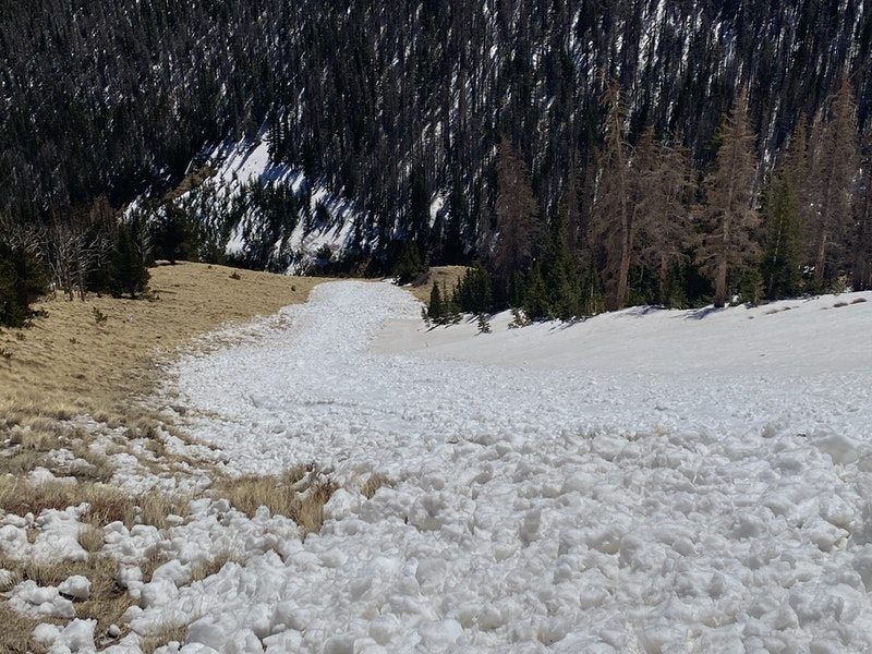<b>Figure 8:</b> Looking down the avalanche from lower in the track. The rounded, chucky debris is typical of wet snow avalanches. (<a href=javascript:void(0); onClick=win=window.open('https://caic-production.imgix.net/xng4cbu4np4wfy12fx0sgt66aerj?ixlib=php-3.1.0&s=4ab323677452b16e00b71d5e7bbbc51e','caic_media','resizable=1,height=820,width=840,scrollbars=yes');win.focus();return false;>see full sized image</a>)