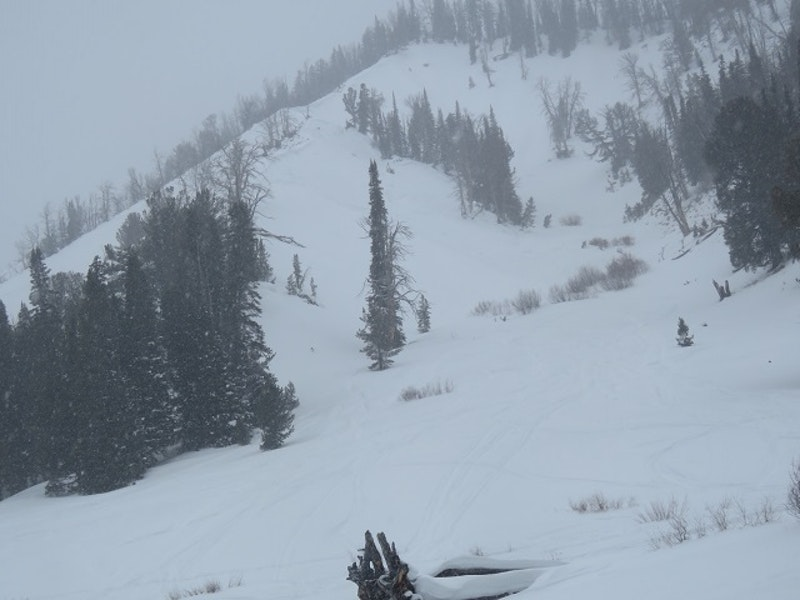 <b>Figure 5:</b> Photograph taken on January 10 of a slab avalanche that was remotely triggered earlier in the day. (<a href=javascript:void(0); onClick=win=window.open('https://caic-production.imgix.net/z2lucoon7kq7arh6j7g0x064jp3f?ixlib=php-3.1.0&s=b602ae0c2dbd0d302eea4e5723d4d317','caic_media','resizable=1,height=820,width=840,scrollbars=yes');win.focus();return false;>see full sized image</a>)